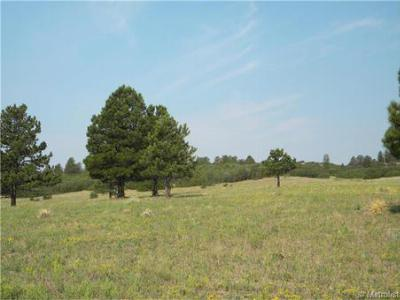 Castle Rock CO Residential Lots & Land Sold: $260,000