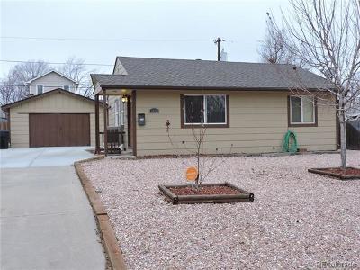 Denver Single Family Home Active: 2671 South Hazel Court