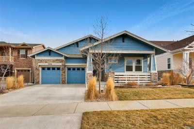 Aurora Single Family Home Under Contract: 6988 South Riverwood Way