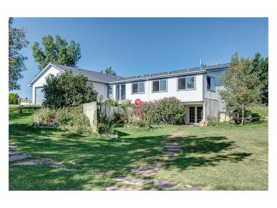 Single Family Home Sold: 46761 Foxwood Drive