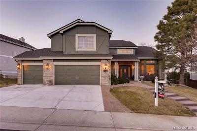 Highlands Ranch Single Family Home Active: 9811 Venneford Ranch Road