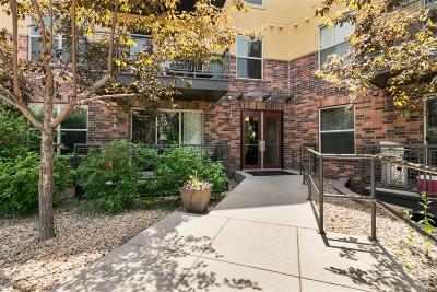 Englewood Condo/Townhouse Under Contract: 9019 East Panorama Circle #503