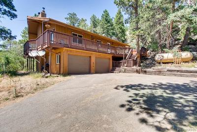 Morrison Single Family Home Under Contract: 8696 South Fairall Road