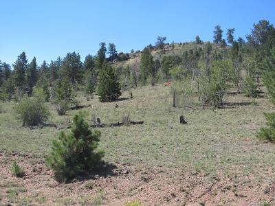 Hartsel CO Residential Lots & Land Active: $32,900