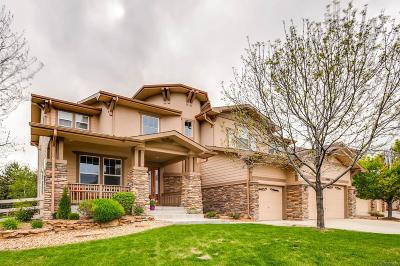Broomfield Single Family Home Active: 14141 Kahler Place