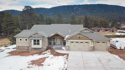 Woodland Park Single Family Home Active: 1225 Cottontail Trail