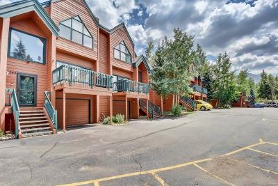 Summit County Condo/Townhouse Sold: 29 Washington Lode Road #D