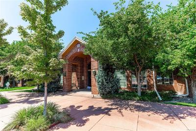 Littleton Condo/Townhouse Under Contract: 1691 West Canal Circle #1112