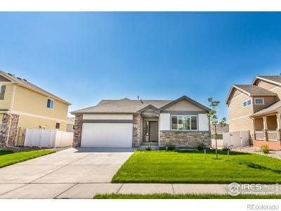Greeley Single Family Home Active: 8804 15th Street Road