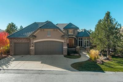 Castle Rock Single Family Home Active: 5113 Pine River Trail