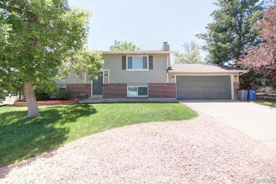 Littleton Single Family Home Active: 328 Jupiter Drive