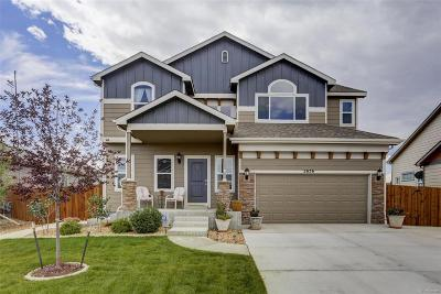 Mead Single Family Home Active: 2636 Mustang Drive