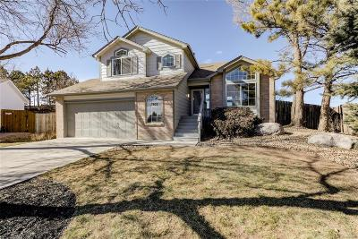 Castle Rock Single Family Home Under Contract: 1307 North Deckers Place
