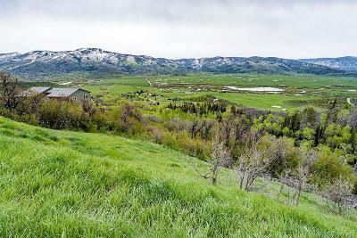 Steamboat Springs Residential Lots & Land Active: 30750 Elk Lane