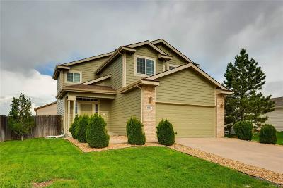 Castle Rock Single Family Home Active: 808 Pitkin Way