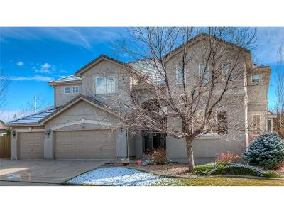 Superior Single Family Home Under Contract: 3262 West Torreys Peak Drive