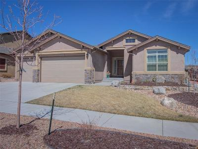 Flying Horse Single Family Home Active: 13241 Dominus Way