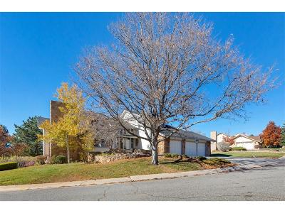 Denver Single Family Home Active: 3093 South King Street