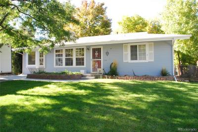 Denver Single Family Home Active: 1215 South Ivanhoe Way