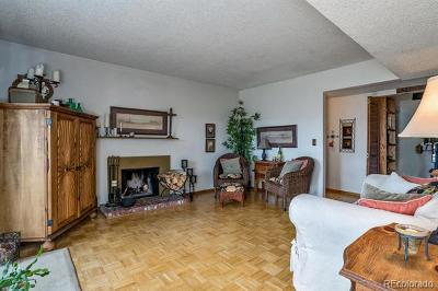 Denver Condo/Townhouse Active: 3141 South Tamarac Drive #E308
