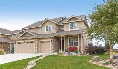 Castle Rock Single Family Home Active: 2855 Mashie Circle