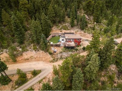 Conifer Single Family Home Active: 31307 Kings Valley