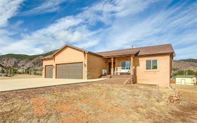 Palmer Lake Single Family Home Under Contract: 740 Platte Lane