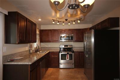 Colorado Springs Single Family Home Active: 617 Rowe Lane
