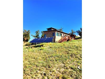 Hartsel Single Family Home Active: 44 Lobo Avenue