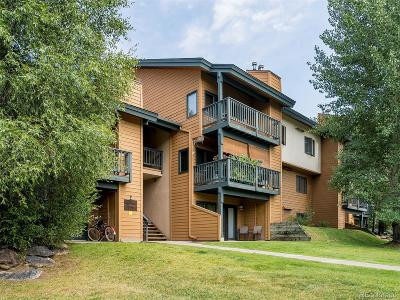Steamboat Springs Condo/Townhouse Under Contract: 460 Ore House Plaza #E-104