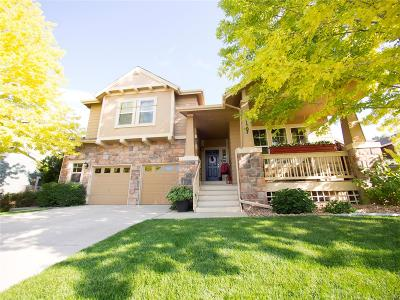 Longmont Single Family Home Active: 1507 Bluefield Avenue