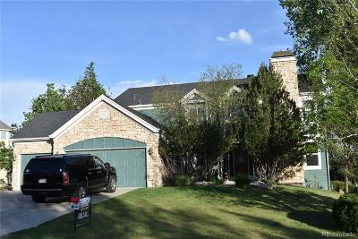 Parker Single Family Home Active: 7364 Meadow View