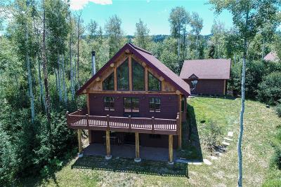 Routt County Single Family Home Active: 31150 Fallen Falcon Trail