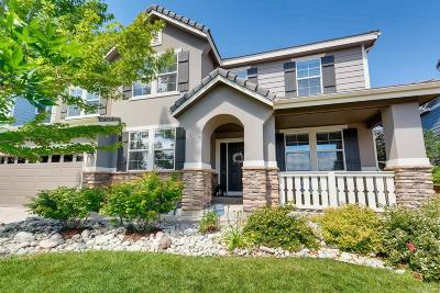 Highlands Ranch Single Family Home Under Contract: 11053 Valleybrook Circle