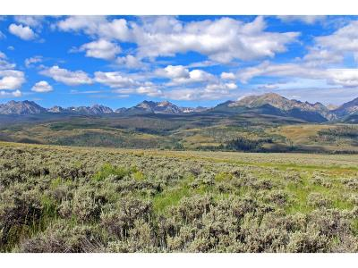 Residential Lots & Land Active: 1704 Elk Run Road