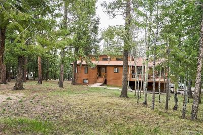 Evergreen Single Family Home Under Contract: 31953 Snowshoe Road