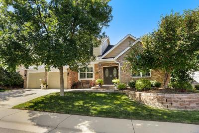 Highlands Ranch Single Family Home Under Contract: 8891 Chestnut Hill Lane
