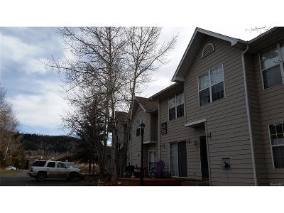 Steamboat Springs CO Condo/Townhouse Active: $325,000