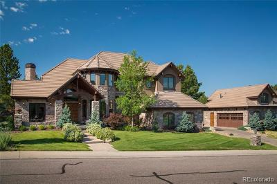 Douglas County Single Family Home Active: 9080 Scenic Pine Drive