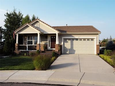 Douglas County Single Family Home Active: 3557 Lemon Court