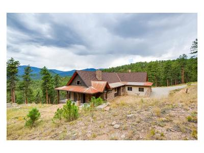 Bailey Single Family Home Under Contract: 121 Holmes Gulch Way