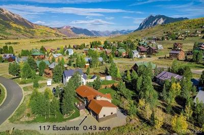 Crested Butte Single Family Home Active: 117 Escalante Street