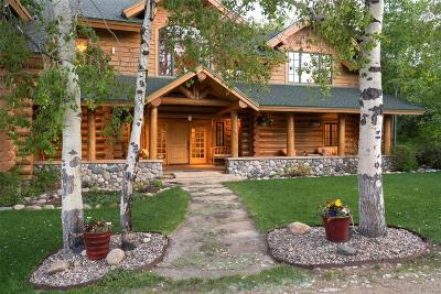 Steamboat Springs Single Family Home Active: 44655 Diamondback Way