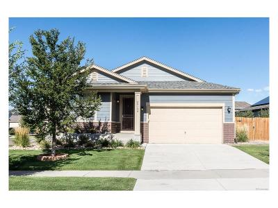 Aurora Single Family Home Active: 25139 East Lake Place