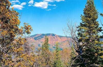 Residential Lots & Land Active: 30290 Blue Grouse Lane