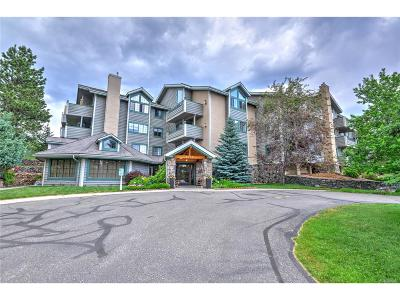 Evergreen Condo/Townhouse Under Contract: 31719 Rocky Village Drive #218