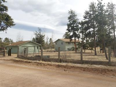 Park County Single Family Home Under Contract: 34856 Mohawk Trail