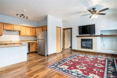 Steamboat Springs Condo/Townhouse Active: 3330 Columbine Drive #1003
