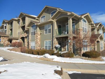 Parker Condo/Townhouse Under Contract: 18611 Stroh Road #5105