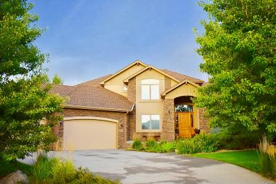 Niwot Single Family Home Under Contract: 6690 Secretariat Drive